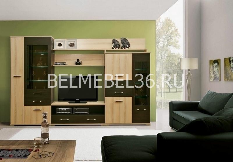 Гостиная Агат-1 из ЛДСП-. Артикул: П-255Н1 | Белорусская мебель в Воронеже
