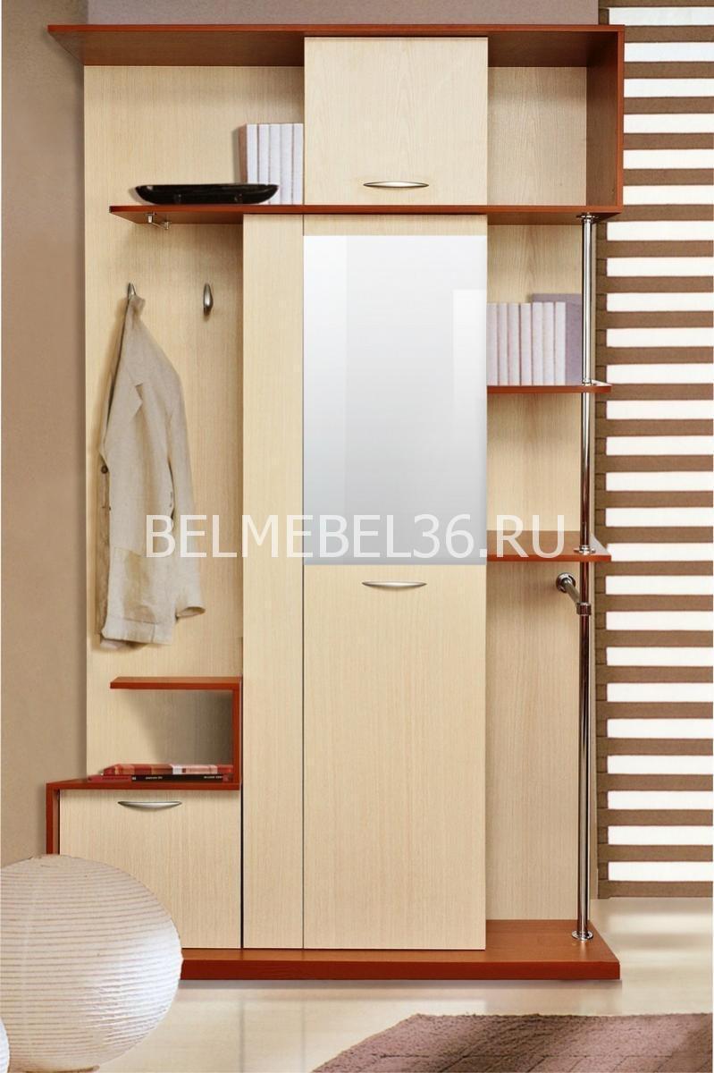 Прихожая Эльба П-217.06 (П-217.06-1)   Белорусская мебель в Воронеже