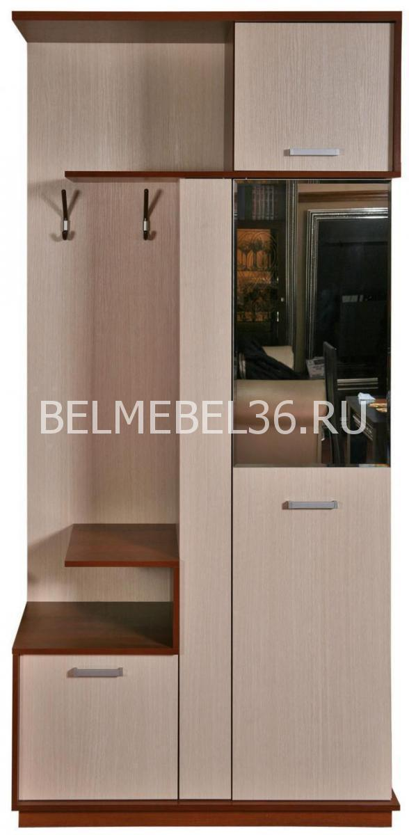 Прихожая Эльба 5 П-217.05 (П-217.05-1)   Белорусская мебель в Воронеже