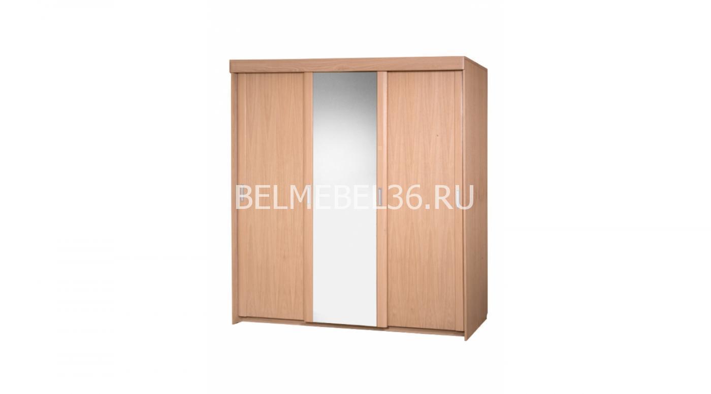 Шкаф-купе «Валенсия» БМ-1602-01 | Белорусская мебель в Воронеже